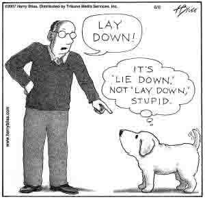 lay-down21