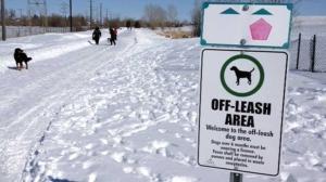 off leash