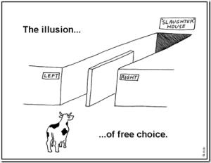illusion_thumb[1]